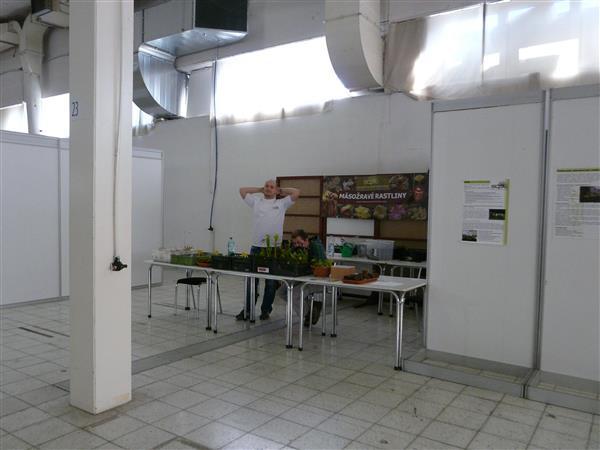 p1140549.jpg