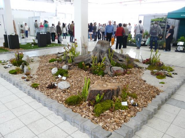Gardenia 2015